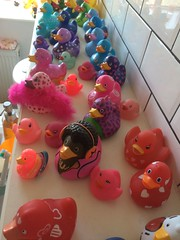Lovely ducklings! (Bennydorm) Tags: iphone5s quack collecting collection birds ducks colours bathroom ornaments playthings toys ducklings