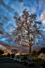 IMG_0168 (penfoto) Tags: 2013 california downey dusk sunset nearlakewoodblvd