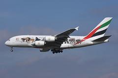 A6-EEI-LHR030416 (MarkP51) Tags: a6eeu airbus a380861 a380 emiratesairlines ek uae unitedforwildlife london heathrow airport lhr egll specialcolours aviationphotography nikon d7200 markp51 image plane widebody aviation