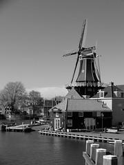 DSCF0499 (Kruijssen) Tags: haarlem nederland holland zwartwit zwart wit black white adriaan molen spaarne fujifilm x30 bw