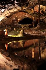 Stalagmit - Stalagmiten ( Tropfstein ) in der Siegel - Grotte - Mirror Grotto in den St. Beatus - Hhlen ( Beatushhlen - Tropfsteinhhle - Hhle - Cave ) im Berner Oberland im Kanton Bern der Schweiz (chrchr_75) Tags: chriguhurnibluemailch christoph hurni schweiz suisse switzerland svizzera suissa swiss chrchr chrchr75 chrigu chriguhurni mai 2015 albumzzz201505mai hurni150522 kantonbern berner oberland berneroberland albumzzzz150522ausflugberneroberland st beatus hhlen beatushhlen beatushhle tropfsteinhhle hhle cave albumregionthunhochformat hochformat thunhochformat albumiminnernderschweiz iminnernderschweiz untertags unter erde