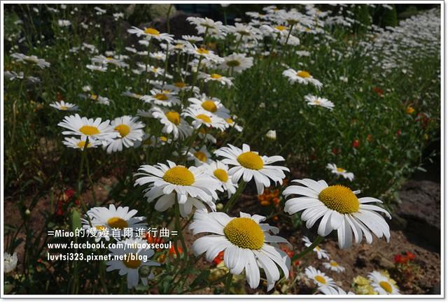 벽초지문화수목원70