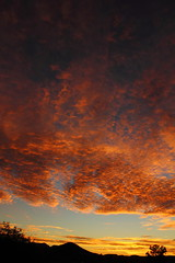Sunrise 6 4 15 #22 (Az Skies Photography) Tags: morning red arizona sky orange cloud sun black june rio yellow skyline clouds sunrise canon skyscape eos rebel gold dawn golden 4 salmon az rico safe rise daybreak 2015 6415 arizonasky riorico rioricoaz arizonasunrise t2i arizonaskyline canoneosrebelt2i eosrebelt2i 642015 arizonaskyscape june42015