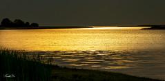Light on the river  (T.ye) Tags: light landscape bank beach todd ye silhouette sunset sunlight contrast    river fraser