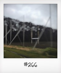 """#DailyPolaroid of 20-6-16 #266 • <a style=""""font-size:0.8em;"""" href=""""http://www.flickr.com/photos/47939785@N05/28860274321/"""" target=""""_blank"""">View on Flickr</a>"""
