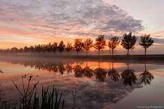 Today's sunrise (Johan Konz) Tags: sunrise noordhollandschkanaal canal water watercourse trees misty light orange red sky clouds reflections outdoor road horses jaagweg purmerend netherlands serene dusk nikon d90