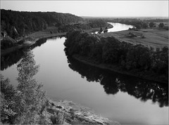 2016-07-24   015-01web (Yuriy Sanin) Tags: kievrus ukraine yuriy sanin wistasp topcor905 blackandwhite bw river desna trees bushes bend          largeformat