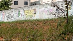 _DSC6027 (Mario C Bucci) Tags: saida fotografia pacheco paulo tellis mario bucci hugo shiraga fabio sideny roland grafites volu ii