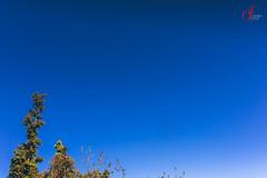 (UrvishJ) Tags: travel india mountain expedition nature clouds river hiking altitude stock adventure online buy getty himalaya sell himalayas gettyimages stockphoto northindia stockimage shivalik himalayanrange uttarakhand tungnath chopta urvish indianphoto stockpicture devariyatal deorital indianpicture gettycontributor urvishjoshi urvishjoshiphotography wwwurvishjoshicom indiantrek sigma35mm14f nikond750 ©urvishjoshiphotography