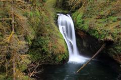 Lower Butte Creek Falls (Bryan Chang) Tags: oregon buttecreek buttecreekfalls oregonwaterfall