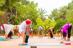 Yoga at the Haciënda