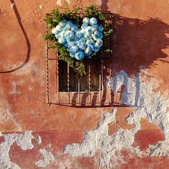 Corsage (Maria Sciandra) Tags: red texture facade mexico flora shadows urbanexploration sanmigueldeallende weathered colonialmexico metalgrating fujifilmx100 mariasciandraphotography