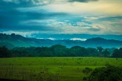 Costa Rican farmland.