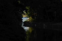 blue socks a go-go (IcarusBlue) Tags: running river foliage alltherage pinkshorts bluesocks