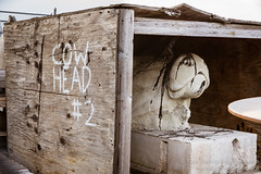 Cow Head #2 on the banks of the Hudson River. New York