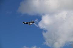 IMG_1980 (steve263) Tags: spitfire hurricane royal welsh