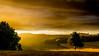Evening light [Explore very late] (Jean-Luc Peluchon) Tags: fz1000 lumix panasonic sunset light contrast color rural campaign orange sky cloud tree weather rain fog mist mystery wow brilliant