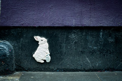 Follow the white rabit (Mister Rad) Tags: streetart rabbit london shoreditch citystreets nikond600 nikon50mmf14g