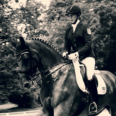 The royal Horse and Rider (feldweg) Tags: horse female caballo cheval riding rider cavallo pferd ronaldo horseback turnier horsebackriding reiten hest mv kon mecklenburgvorpommern dressage 2016 dressur landesmeisterschaften reiterin redefin