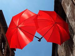 PRADES-38 (e_velo ()) Tags: 2016 catalunya baixcamp prades primavera spring olympus e620 umbrellas