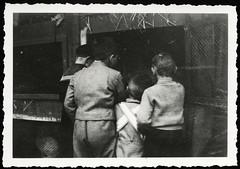 Archiv G352 Wissbegierig, 1930er (Hans-Michael Tappen) Tags: boy boys children 1930s outfit child outdoor kinder tier junge kaninchen jungen kleidung hasen tierfoto haarschnitt tierliebe kaninchenstall tierfreunde hasenstall 1930er fotorahmen tierfreund archivhansmichaeltappen kanichenstall