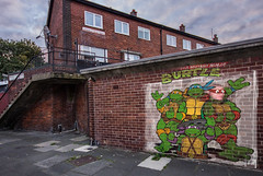 cowabunga (Richard burtle) Tags: graffiti art artwork vandalism vandal vandalised cowabunga teenagemutantninjaturtles turtle burtle turtlepower halfshell michelangelo donatello leonardo rafeal marshalarts urban urbandecay photoshop photomontage