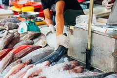 Man prepare fish for sale (Evgeny Ermakov) Tags: asia asian georgetown malaysia penang southeast southeastasia culture fish fresh freshness hand ice local man market marketstall marketplace raw sale salesman seafood sell seller selling stall street streetmarket traditional vendor wetmarket