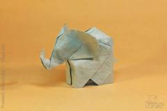 Fumiaki Kawahata - Elephant (IverRu) Tags: iver kawahata elephant слон animal животные