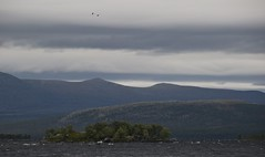 Femunden (MotbakkeMartin (Martin H-N)) Tags: norway hiking femunden