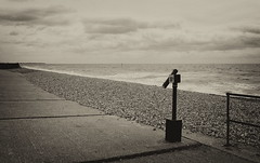 Peeper (6079 Jones,P) Tags: chichester west sussex img4348 pebble beach breakers