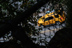 XE1-08-24-14-162-2 (a.cadore) Tags: nyc newyorkcity color zeiss centralpark candid cab taxi uptown fujifilm carlzeiss hff transverse xe1 zeissbiogon35mmf2 biogont235 fujifilmxe1