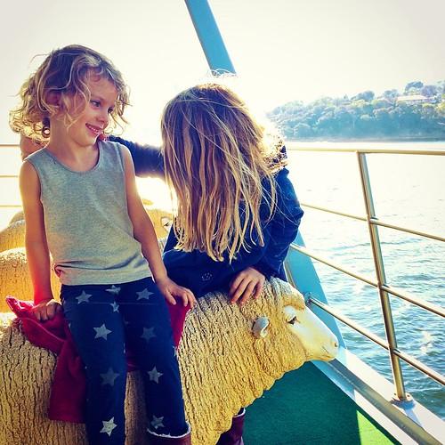 120/365 • a rare moment of truce on the ferry back from #MONA - sheepish • #120_2015 #tasmania2015 #4yo #7yo #ferry #derwentriver #sheep #travel #autumn2015 #mybirthdayjourney