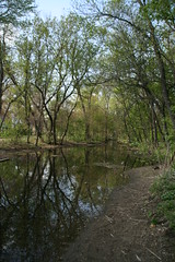IMG_7994 (krissos.photography) Tags: sky cloud sunlight nature water minnesota clouds creek landscape photography path minneapolis paths naturephotography 2015 minnehahacreek minneapolisminnesota seasonspring mostlysunny monthmay
