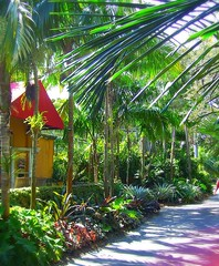 ~Oct 2009 Fairchild Gardens #8~ (endemanf) Tags: miamiflorida fairchildbotanicalgardens tropicallandscapes tropicaljunglegardens