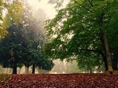 Gradski park (antoniojurkin) Tags: croatia podravina slavonija virovitica