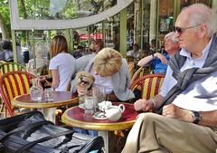 2015-06-07   Paris - Café Le Rostand - 6 Place Edmond Rostand (P.K. - Paris) Tags: street people paris café june french juin terrace candid terrasse sidewalk 2015