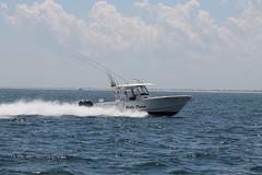 IMG_4674 (Mr.J.Martin) Tags: fishing deepseafishing missmichelle pointpleasant newjersey flounder seabass searobin charterboat sandshark