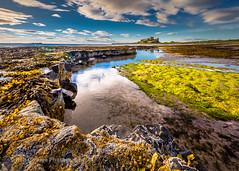 Bamburgh Sunrise (Rob Grange Photography) Tags: rockpools castle summer northumberland sunrise tide harrypotter beach sand england unitedkingdom gb