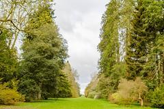 View of Westonbirt Arboretum (Mark at Magdalen) Tags: trees england plants unitedkingdom places gloucestershire westonbirt gb