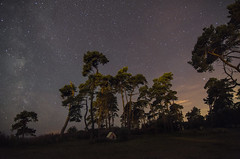 Night sky (Agge92) Tags: stars astro photography stjrnor stjrnklart ystad nighphoto night d7000 nikon tokina 1224