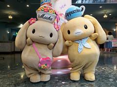 P7160187.jpg (mono0x) Tags: sanrio mocha jp  cappuccino greeting cinnamoroll puroland