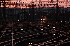 SBB Lokomotive Re 460 026 - 8 mit Taufname Fricktal ( Hersteller SLM Nr. 5503 - ABB - Inbetriebnahme 1992 ) am Bahnhof Zrich HB im Kanton Zrich der Schweiz (chrchr_75) Tags: hurni christoph schweiz suisse switzerland svizzera suissa swiss chrchr chrchr75 chrigu chriguhurni chriguhurnibluemailch juli 2016 juli2016 hurni160718 re460 re 460 albumsbbre460 sbb cff ffs schweizerische bundesbahn bundesbahnen lok lokomotive