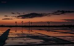 Nas Salinas de Praia Seca - Araruama - Rio de Janeiro (mariohowat) Tags: brazil brasil riodejaneiro natureza alvorada amanhecer saquarema nascerdosol praiaseca salinasdepraiaseca
