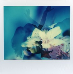 Lush (Cutspark) Tags: projections projectorart polaroid spectra impossibleproject doubleexposure flowers