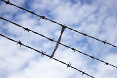 (Molly Sanborn) Tags: travel summer nature barbed wire blue sky clouds abstract specialty silhouette