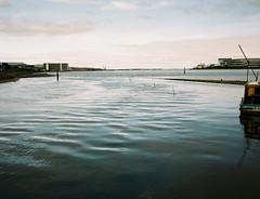 (Misao Hasegawa) Tags: makina nikon ploubel portra film filmlover 67 river landscape haneda tokyo japan green sky