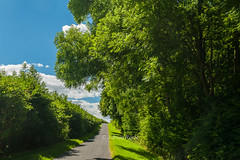 DSC_8050 (Adrian Royle) Tags: lincolnshire lincolnshirewolds walk outdoors rural agriculture landscape sky clouds tree land bimble nikon