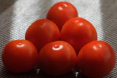 Tomatos a'la bilard  ;) (jacekbia) Tags: pomodory tomatoes jedzenie food bilard closeup czerwony red ywno