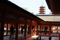 (tiagoalexandresilva) Tags: asia honshu japan sonya6000 hiroshima miyajima itsukushima