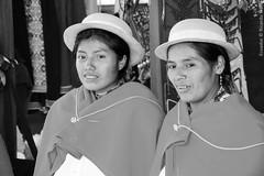 The Devils Nose, Ecuador. (RViana) Tags: ecuador equador equator southamerica latinamerica andeanstates amricadosul amricalatina americaandina